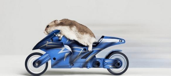 biker mouse